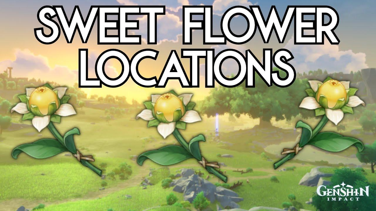 Genshin Impact Sweet Flower Location