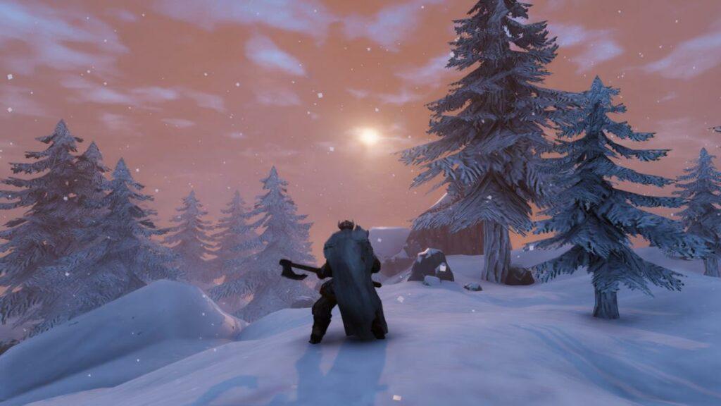 player preparing night woods valheim