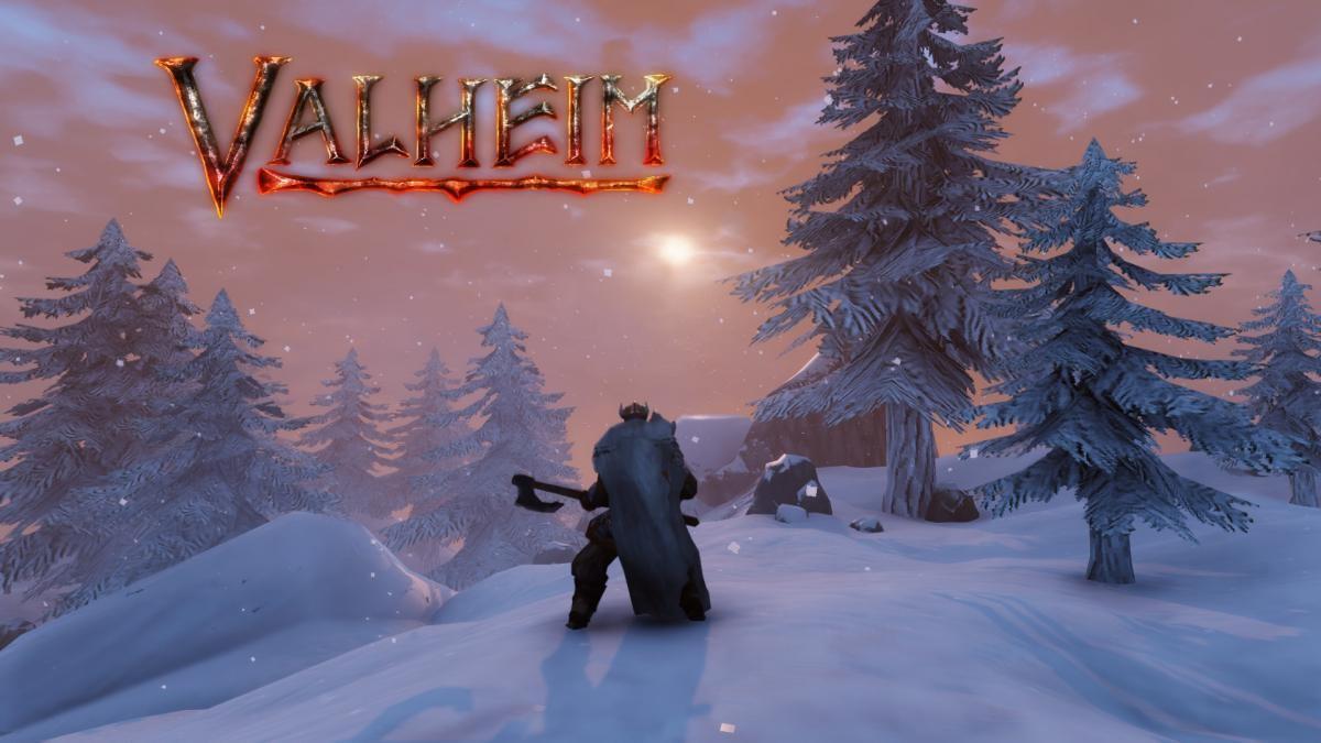 player preparing night woods valheim 2