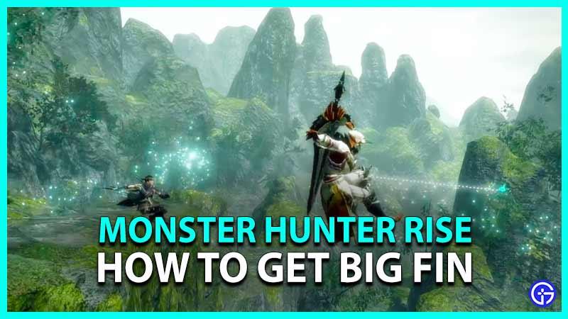 Monster Hunter Rise Guide for big fin