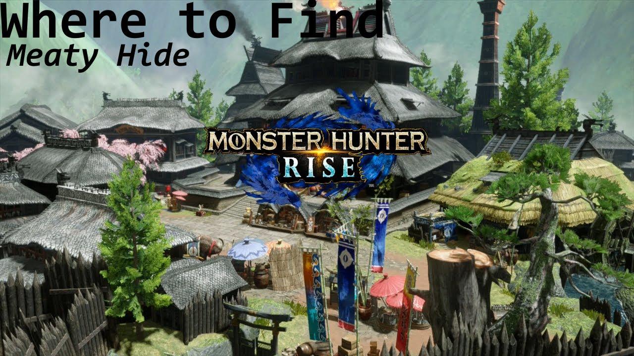 Zamite location in Monster Hunter Rise