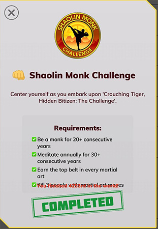 Young Days of Shaolin Monk