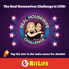 Bitlife Real Housewives Challenge