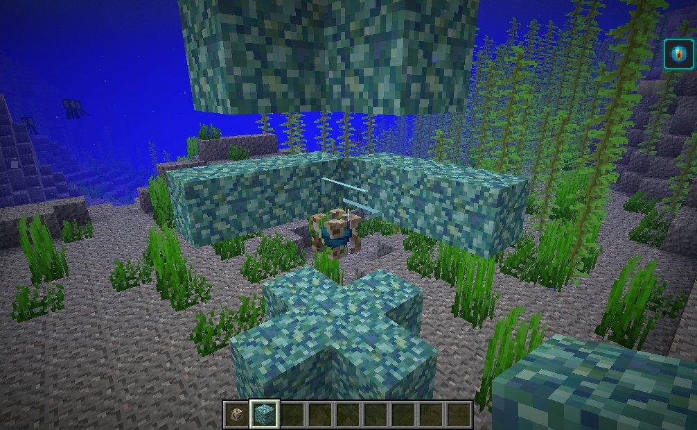 Minecraft Heart of the Sea
