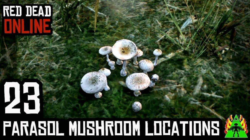 Red Dead Online Parasol Mushrooms