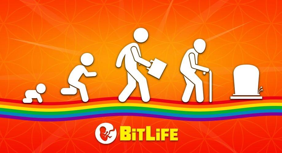 BitLife pilot lisence