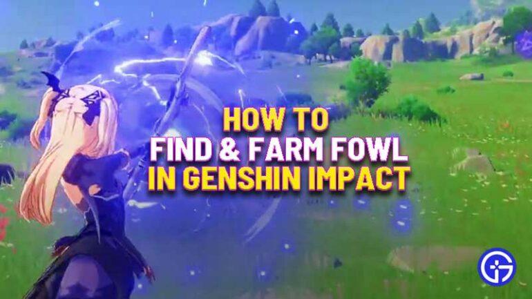 find-fowl-in-genshin-impact