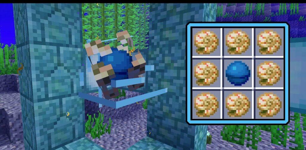 Minecraft Nautilus Shells